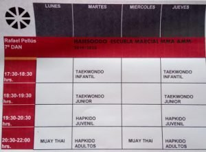 HAPKIDO, MMA, TAEKWONDO INFANTIL y JUVENIL/ HANSOODO ESCUELA MARCIAL 19